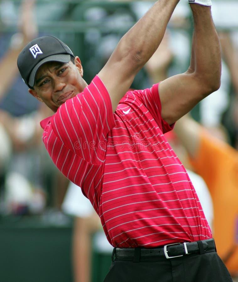 Tiger Woods concurrençant chez Doral image stock