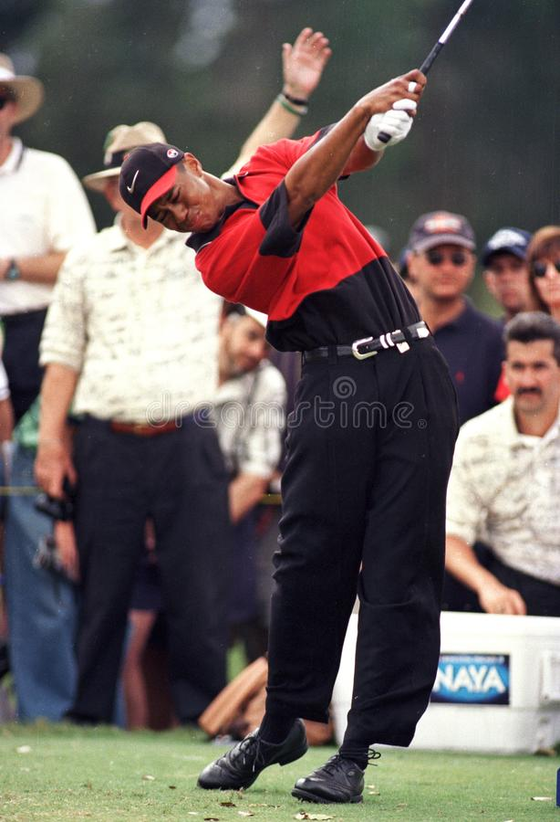 Tiger Woods dans l'action chez Doral Country Club image stock