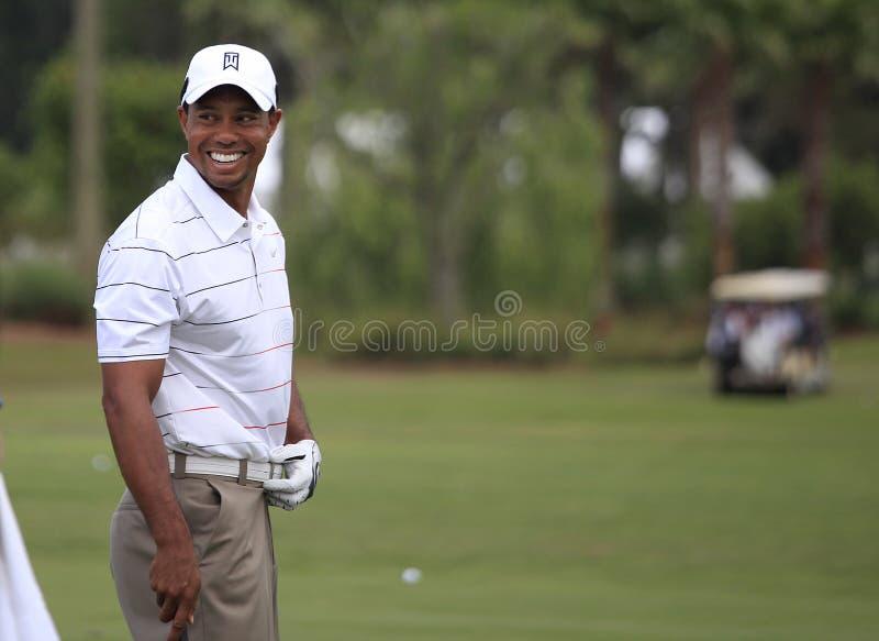 Tiger Woods an der Spieler-Meisterschaft 2012 stockbild