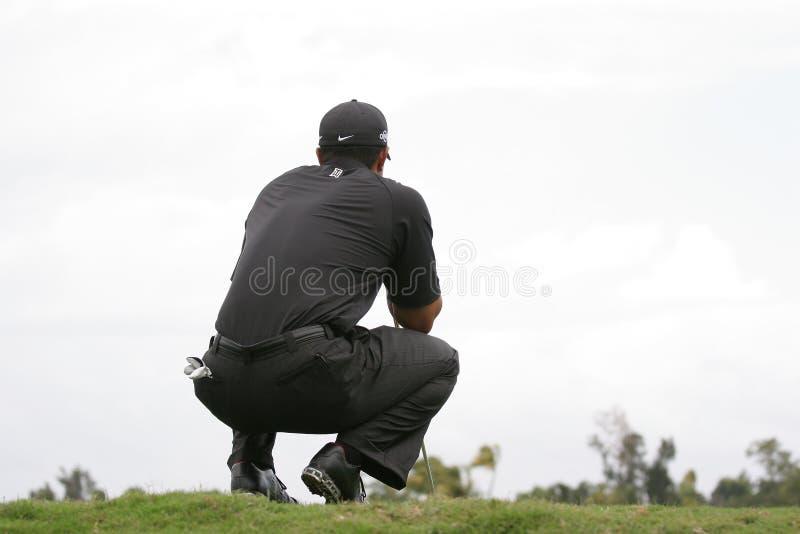 Tiger Woods Doral 2007 photo libre de droits