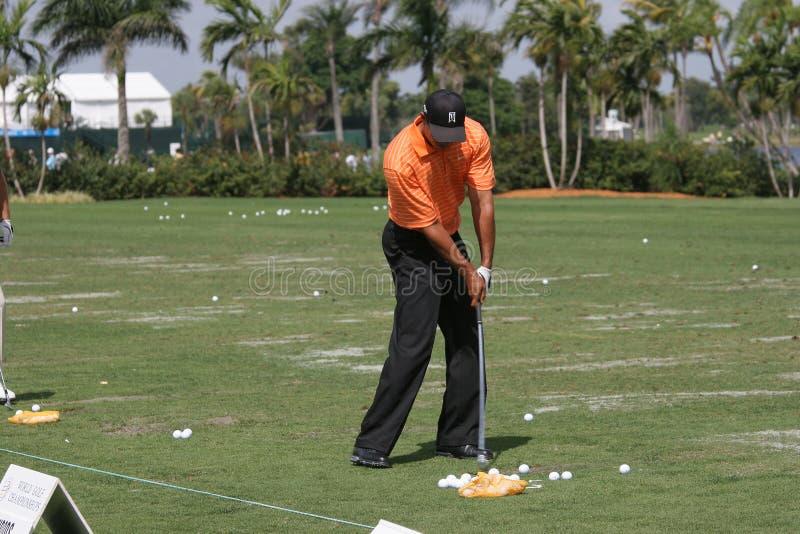 Tiger Woods Doral 2007 stockfotos