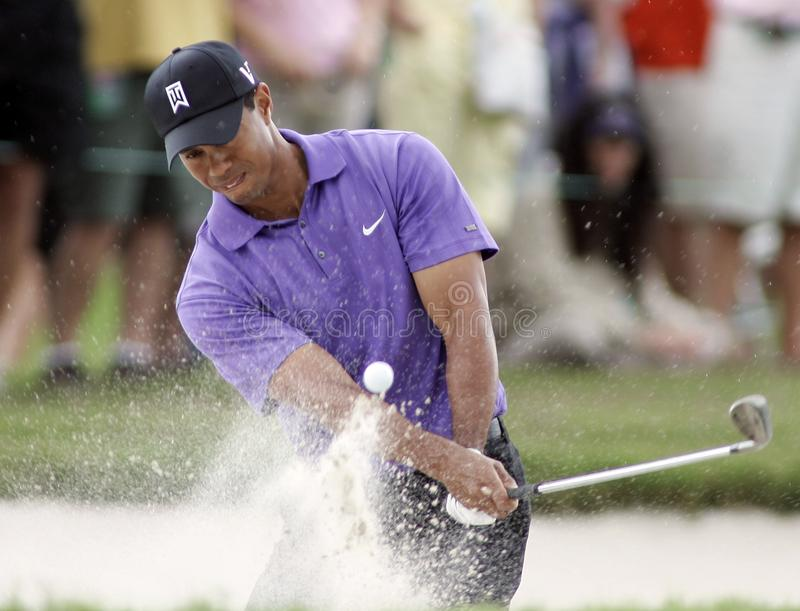 Tiger Woods in Doral in Miami stock afbeelding