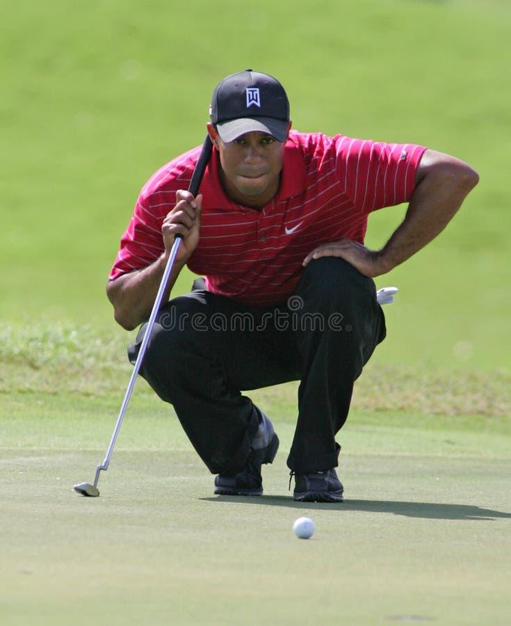 Tiger Woods em Doral em Miami foto de stock