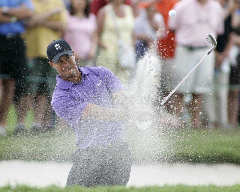 Tiger Woods em Doral em Miami imagens de stock
