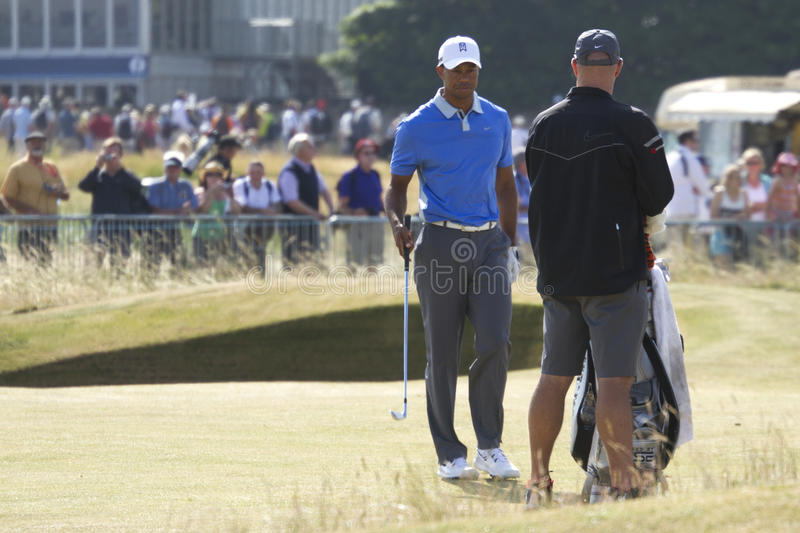 Tiger Woods in Fairway stock afbeeldingen