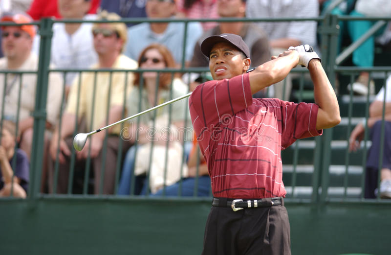 Tiger Woods. Famed Professional legend Tiger Woods. Image taken from color slide royalty free stock photography