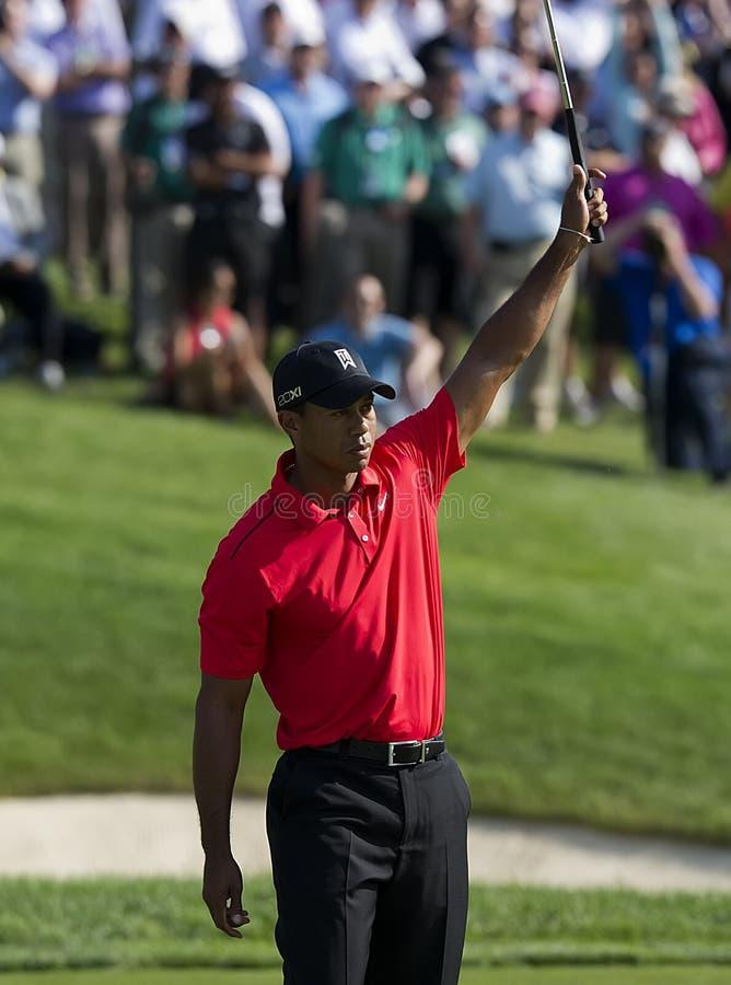 Tiger Woods ganha o memorial foto de stock