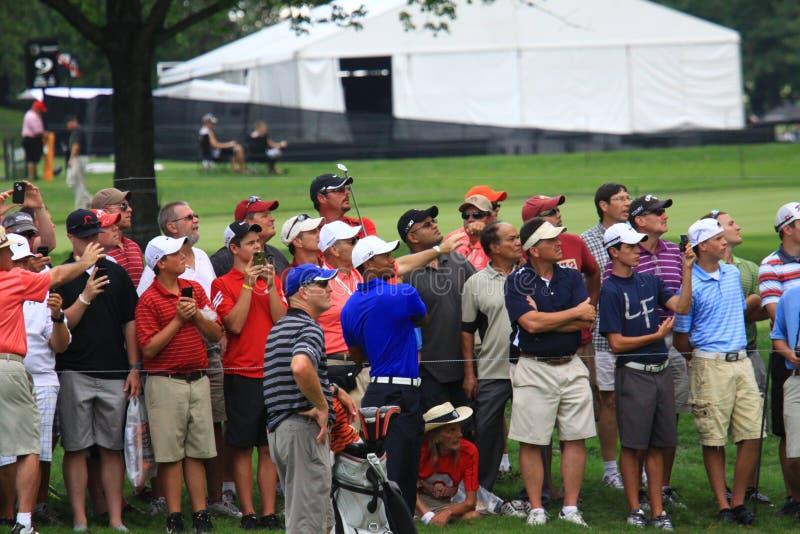 Tiger Woods grać w golfa pro zdjęcie stock
