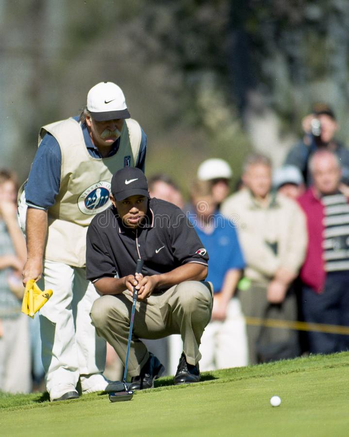 Tiger Woods i Mike Fluff Cowan obrazy royalty free