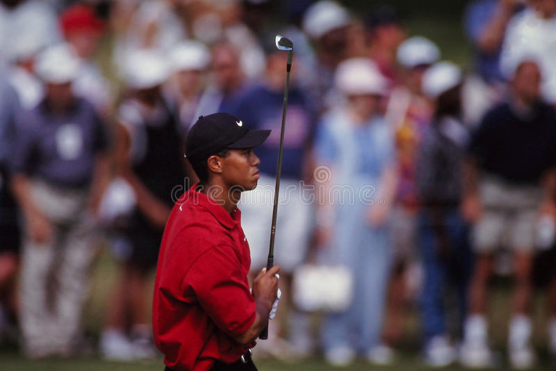 Tiger Woods Iron Shot stock afbeeldingen