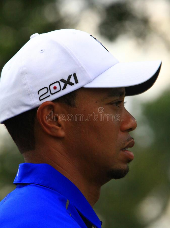 Tiger Woods observant l'action images stock