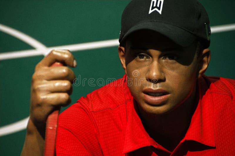 Tiger Woods op vertoning bij Mevrouw Tussauds Hollywood stock fotografie