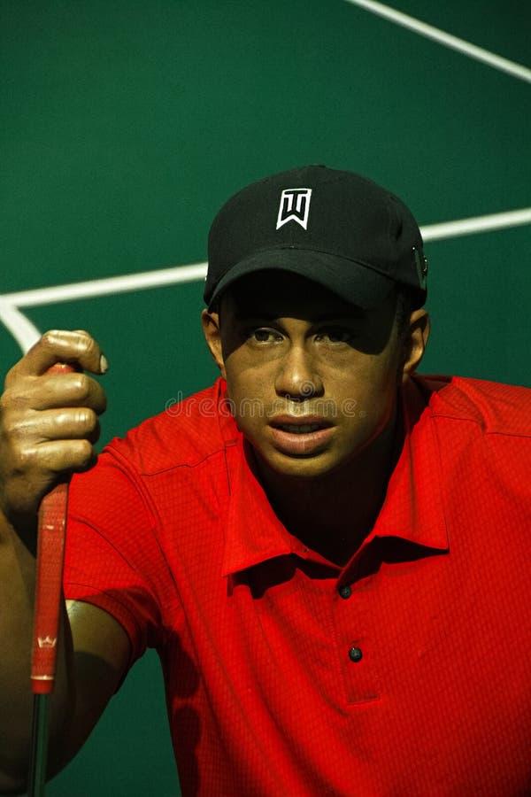 Tiger Woods op vertoning bij Mevrouw Tussauds Hollywood royalty-vrije stock fotografie