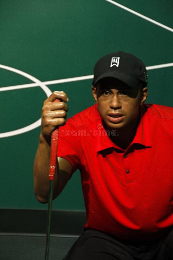 Tiger Woods op vertoning bij Mevrouw Tussauds Hollywood royalty-vrije stock afbeeldingen