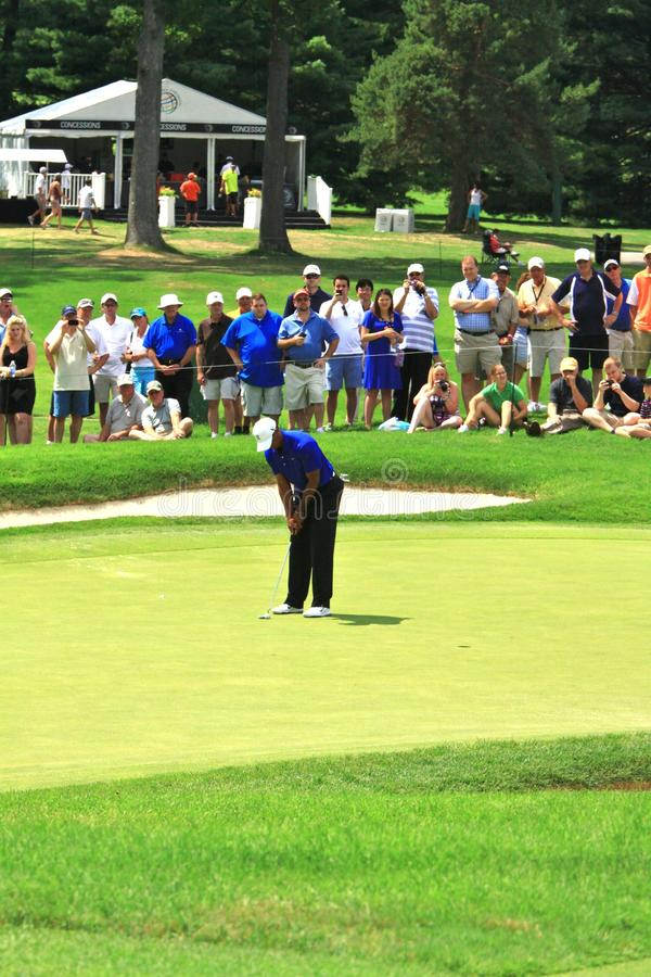 Tiger Woods pro golfista fotografia stock