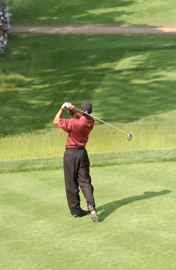 Tiger Woods Professional Golfer stock foto's