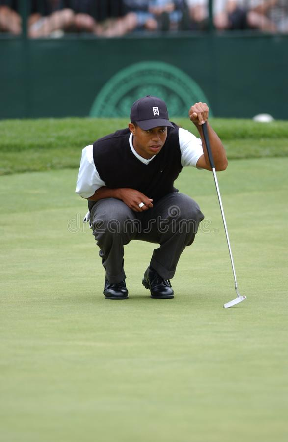 Tiger Woods Professional Golfer royalty-vrije stock foto's