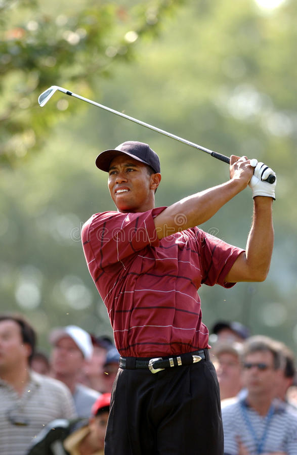 Tiger Woods Professional Golfer photographie stock