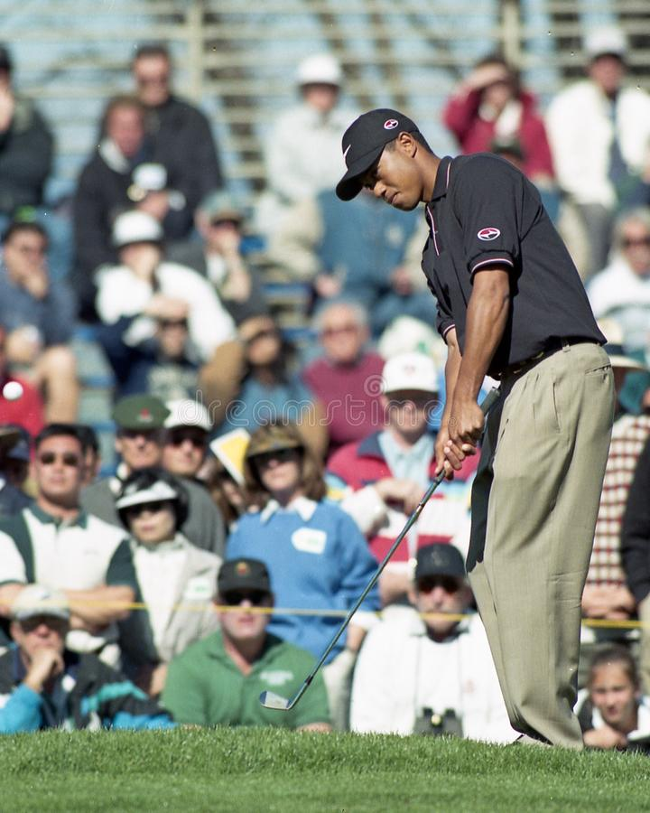 Tiger Woods. Professional Golfer legend Tiger Woods. Image taken from a color negative stock image