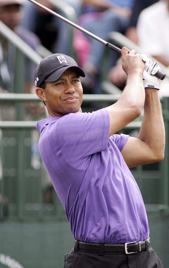 Tiger Woods przy Doral w Miami obrazy royalty free