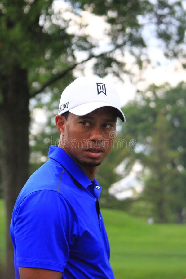 Tiger Woods at the race. Front view of Tiger Woods as he watches the crowd royalty free stock images