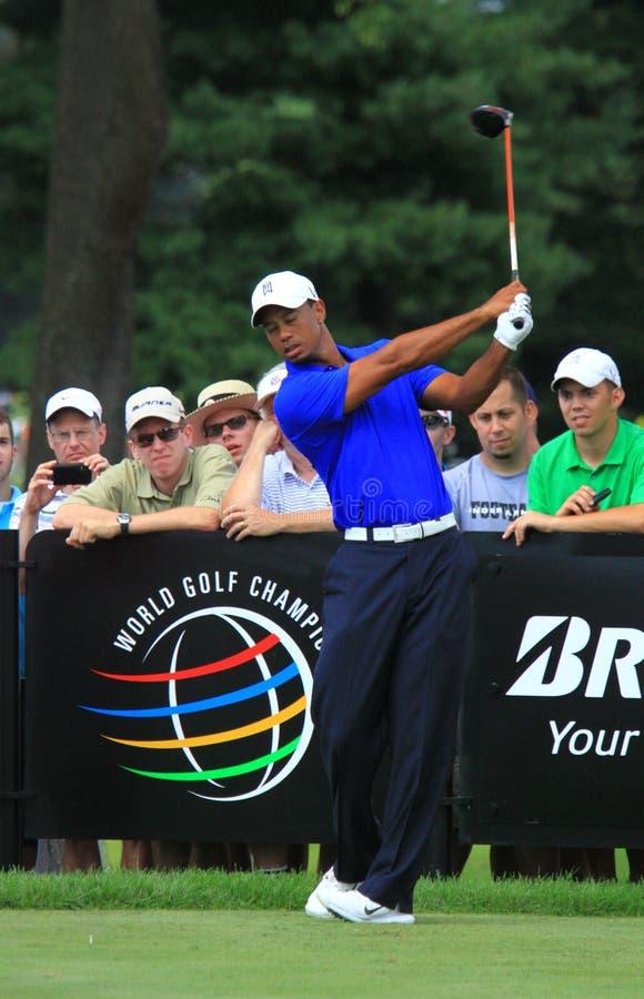 Tiger Woods teeing daleko obrazy royalty free