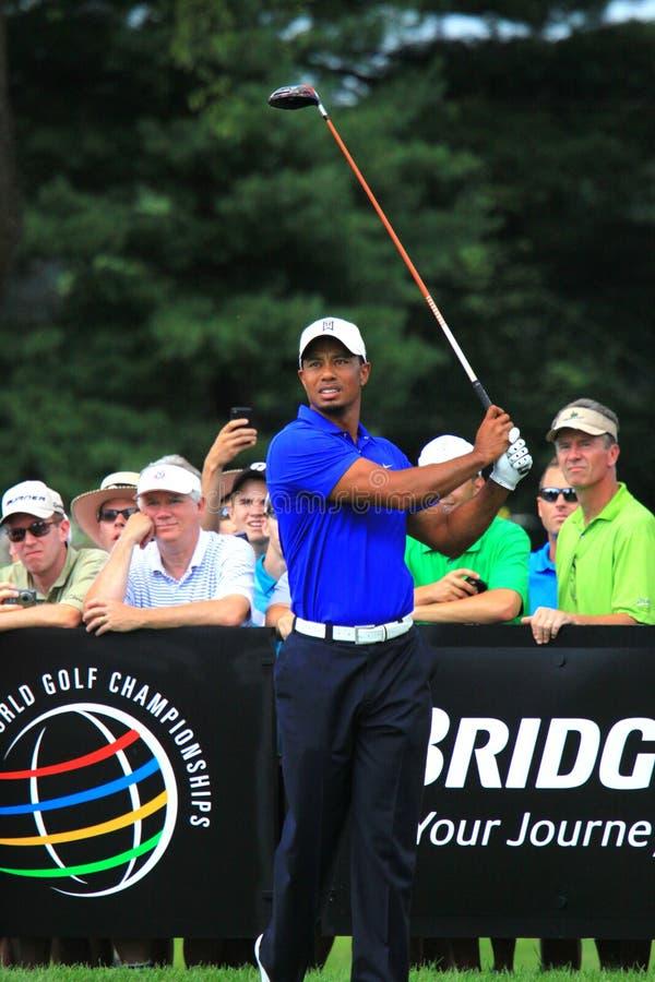 Tiger Woods trójnika strzał obrazy stock