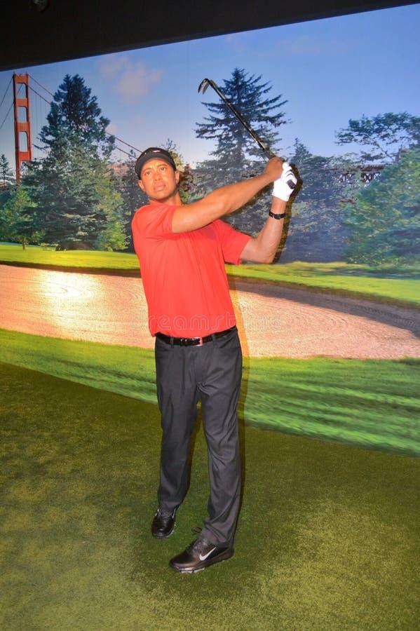 Tiger Woods vaxstaty royaltyfri foto