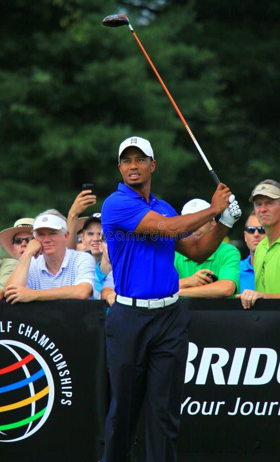 Tiger Woods w trójnika pudełku fotografia royalty free