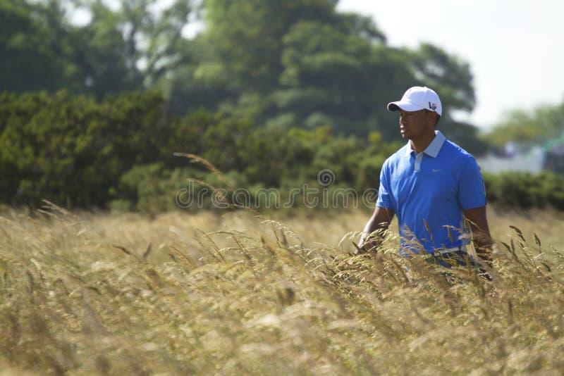 Tiger Woods Walking med stängda ögon royaltyfri fotografi