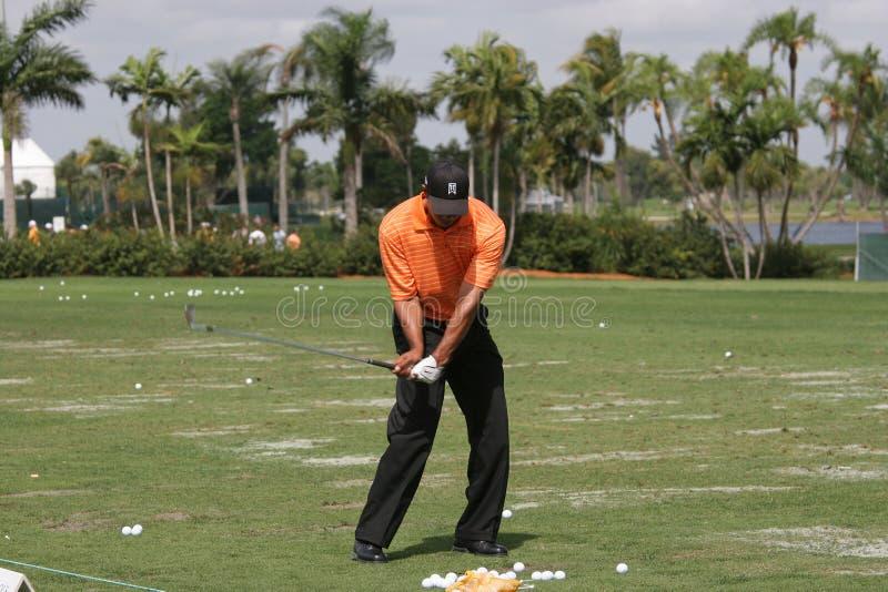 Tiger Woods an WGC Doral 2007 stockbild