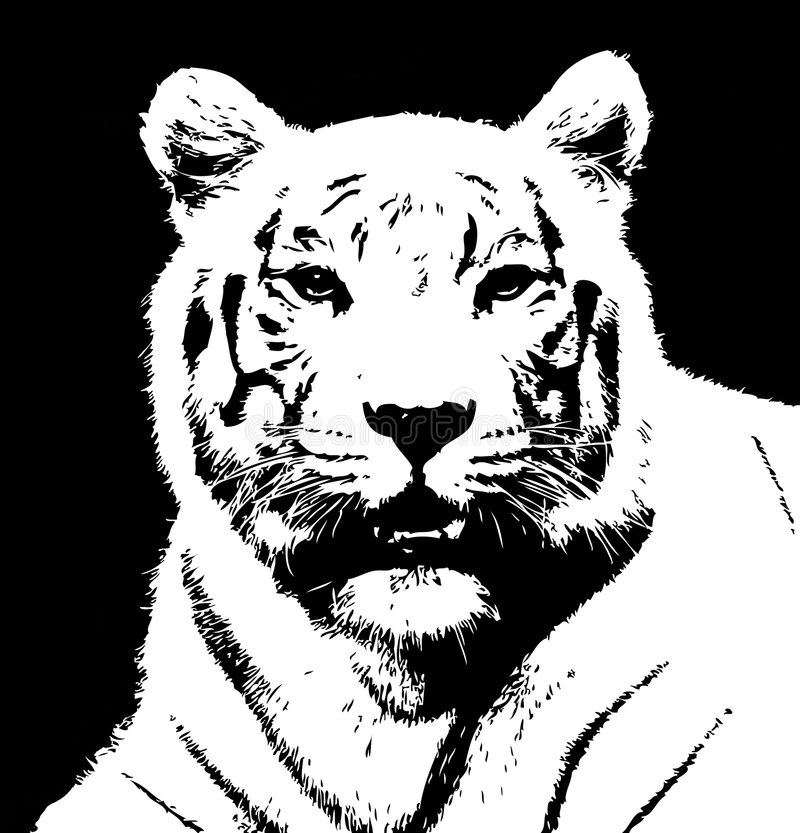 tiger1 stock illustrationer