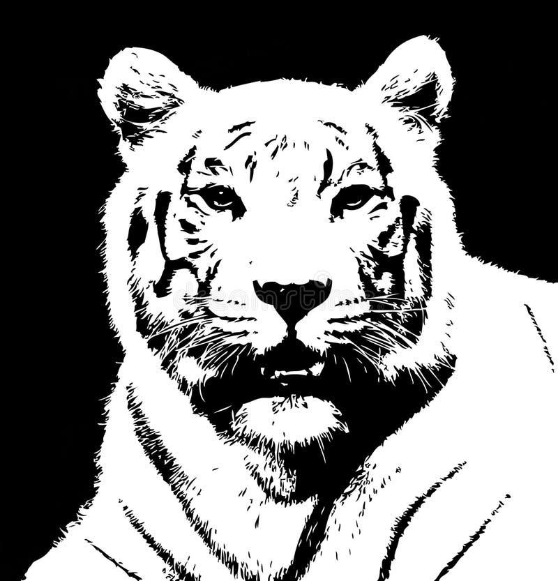 tiger1 库存例证