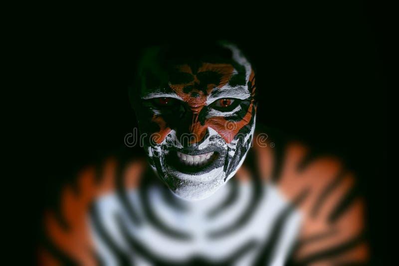 Tigerframsida royaltyfria bilder