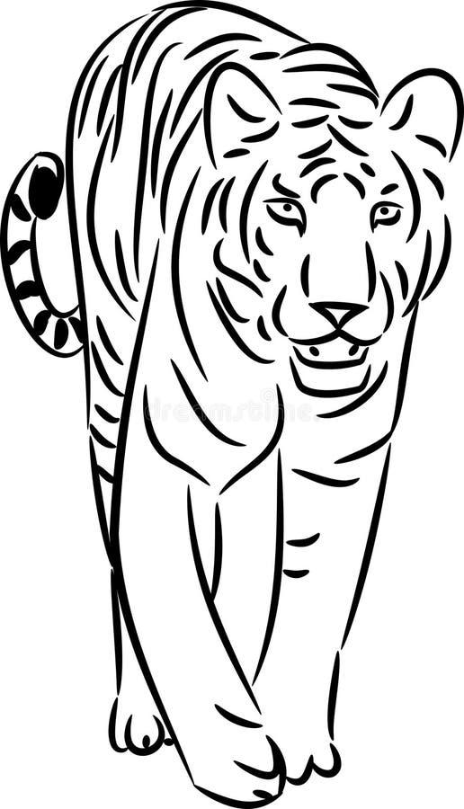 Tigerlinje konst vektor illustrationer
