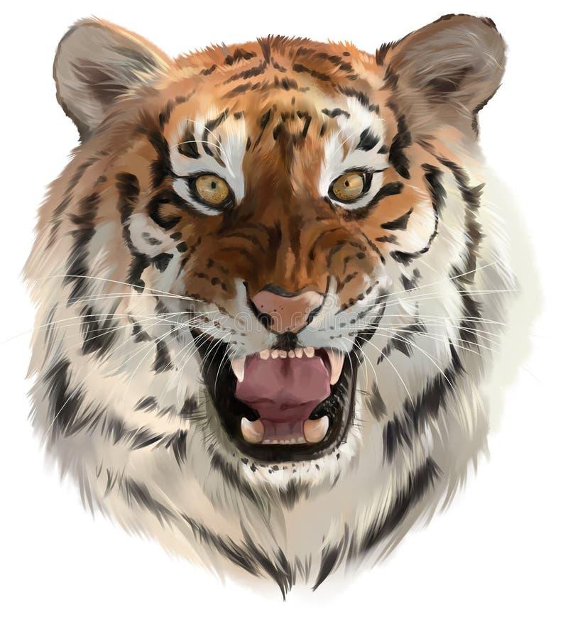 Tigermorrandena royaltyfri illustrationer