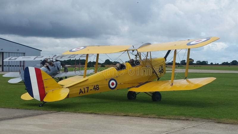 Tigermoth royalty free stock photos