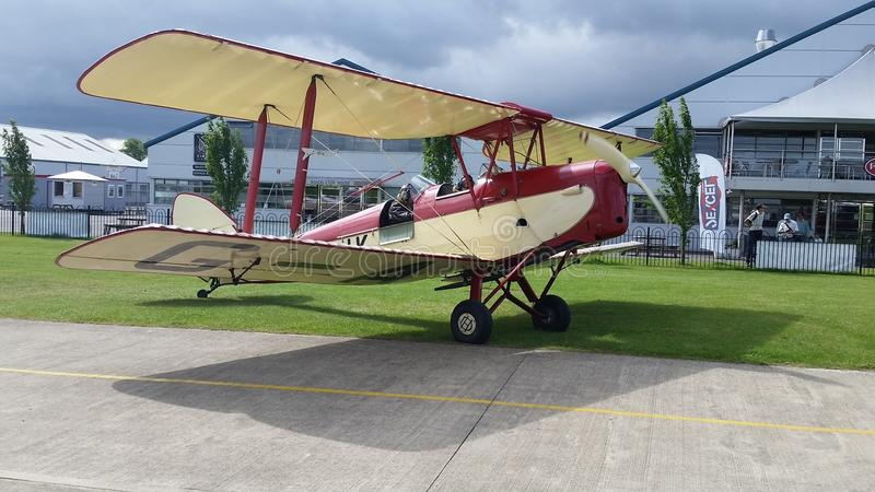 Tigermoth royalty free stock photography