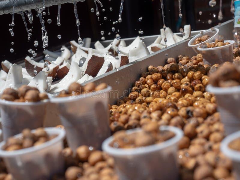 Tigernuts bevattnade f?r att h?lla dem nya arkivbild