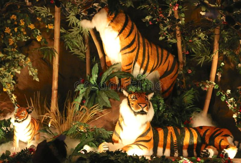 Tigers At The Rainforest Cafe, Nashville Tennessee. Rainforest Cafe is a themed restaurant chain owned by Landry's, Inc. of Houston, Texas. It was founded by royalty free stock images