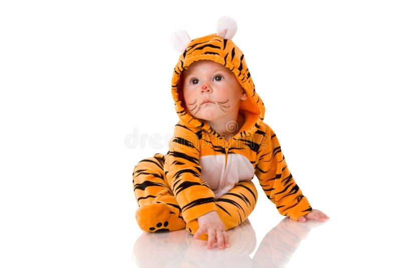 Tigerschätzchen stockfoto