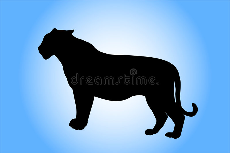 Tigerschattenbild stockfotos