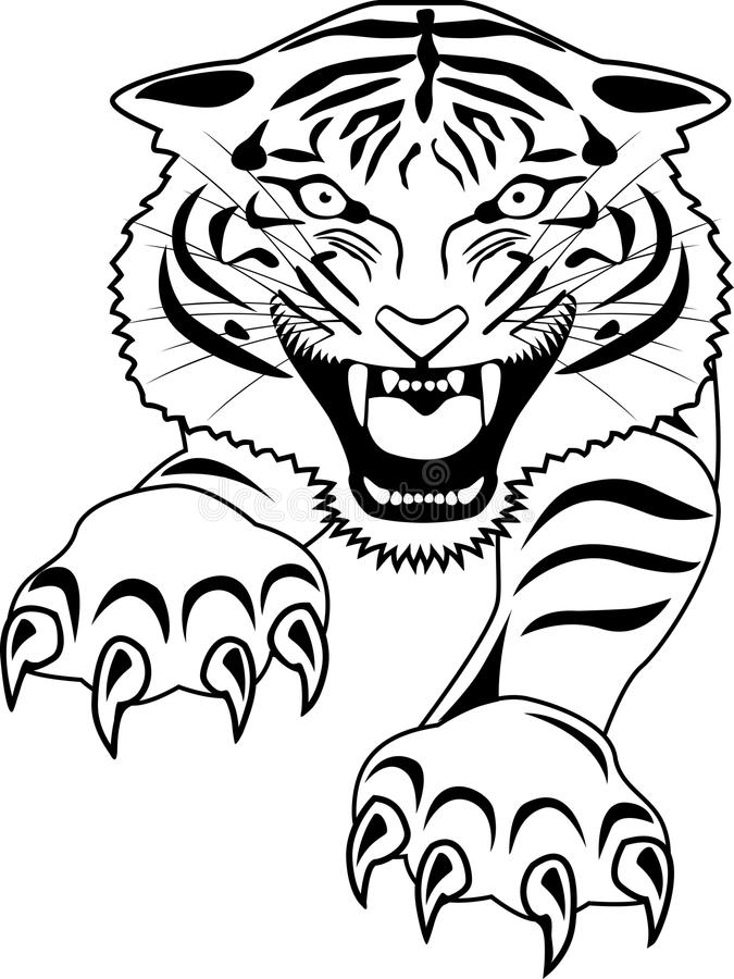 Download Tigert tattoo stock vector. Illustration of stripe, angry - 23689528