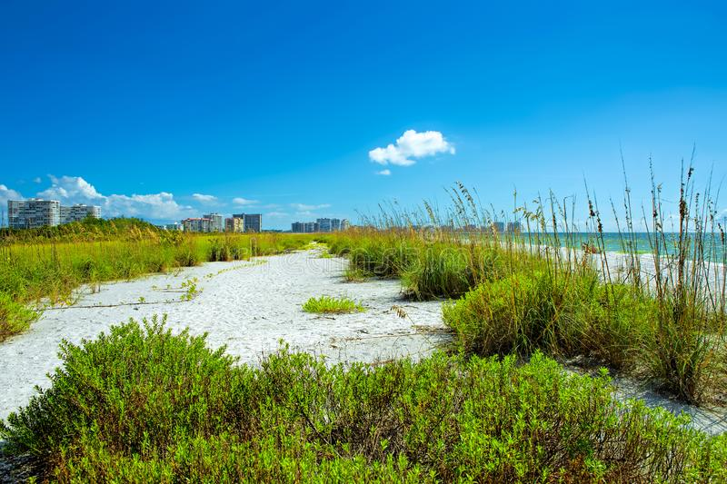 Tigertail beach at Marco Island. Nature of Tigertail beach at Marco Island royalty free stock photos