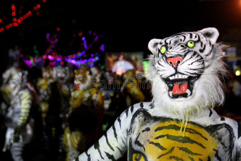 Tigertanzprozession lizenzfreie stockfotografie