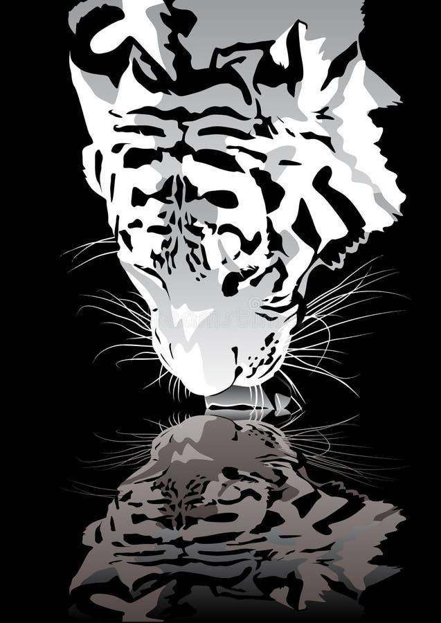 Tigertrinken stock abbildung