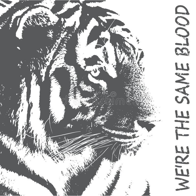 Tigertypografi, utslagsplatsskjortadiagram, vektorer Kontur av en tiger i grå färger Skydd av vilda djurbegreppet stock illustrationer