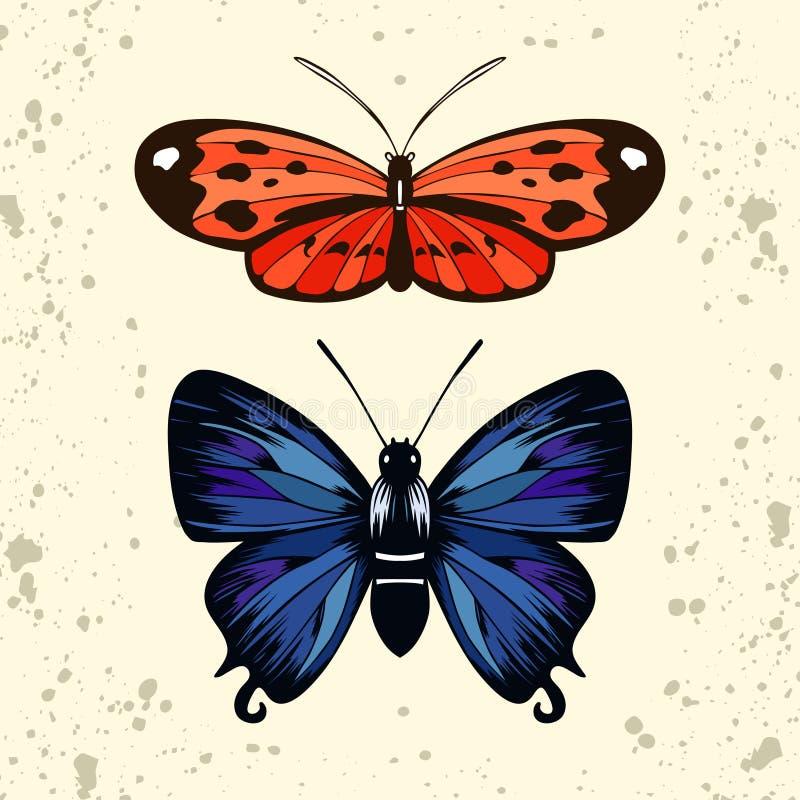 Tigerwing rosso e farfalla di hairstreak blu illustrazione vettoriale