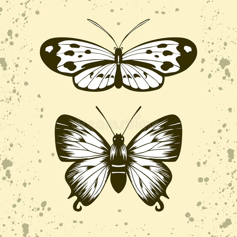 Tigerwing tiré par la main et papillon de hairstreak bleu illustration libre de droits