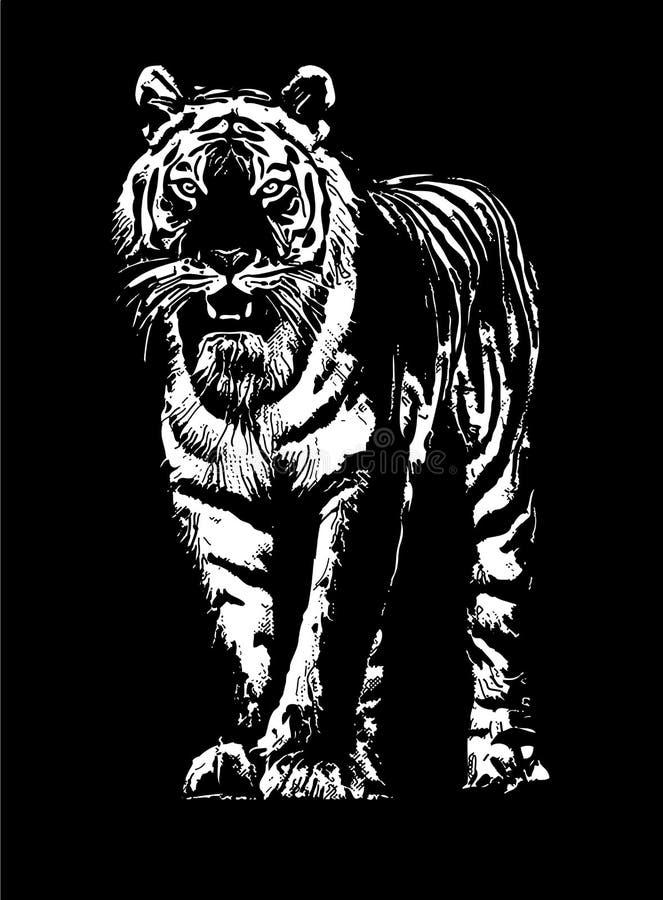 Tigerzeichnungsskizze lizenzfreie abbildung